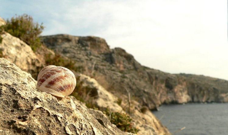 Klippen bei der Blue Grotto auf Malta