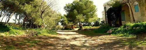 Wanderweg abseits des Wallpfades auf der Dwejra Lines