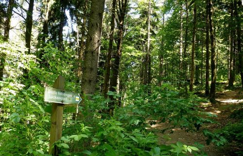 klettersteig-alpiner-grat-hinweisschild-grosse-felsengasse-500
