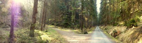 zwillingsstiege-sachsische-schweiz-weggablung