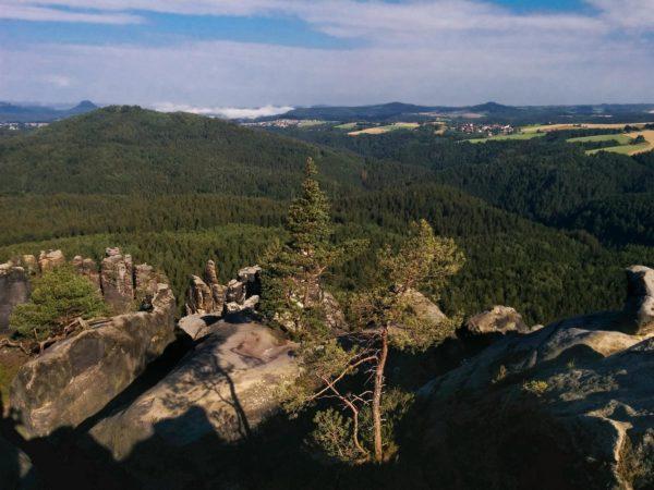 Felsplateau der Häntzschelstiege mit Bäumen