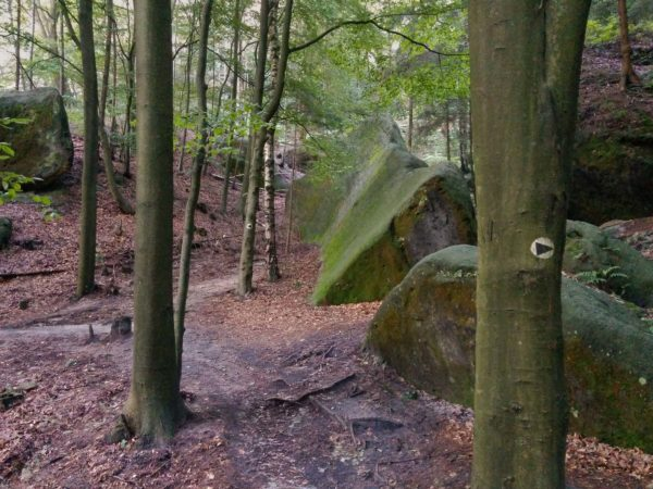 Schwarze Pfeilmarkierungen für Kletterzugänge in Sächsischer Schweiz