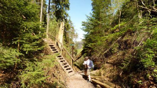 Wegweiser zum Carolafelsen in der Sächsischen Schweiz