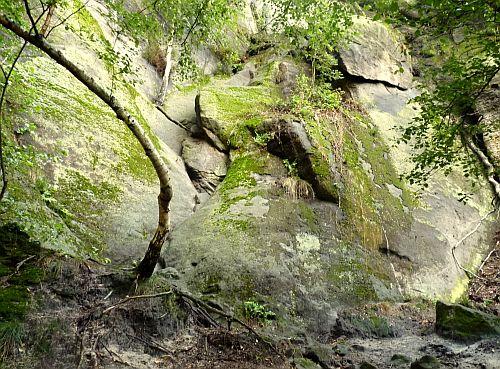 Starke Stiege Sächsische Schweiz - Einstieg der Stiege