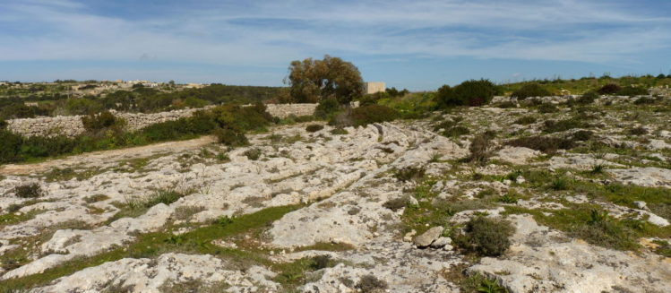 Schleifspuren Cart Ruts auf Malta