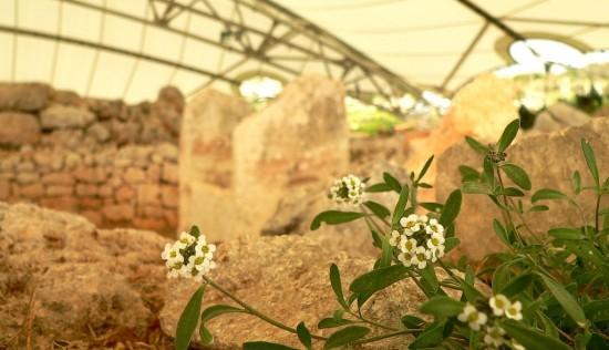 Die Reste des Mnajdra Tempel