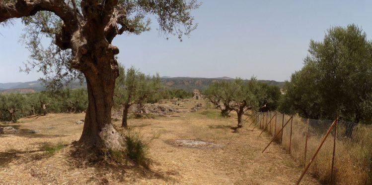 Antikes Sparta