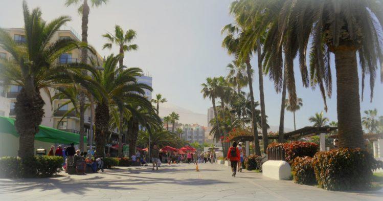 Strandpromenade mit Palmen