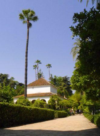 Allee mit Palmen in der Gartenanlage im Alcazar von Sevilla