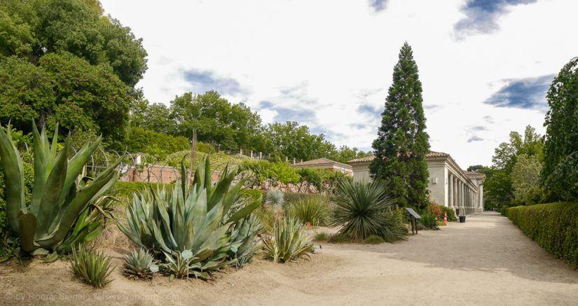 Botanischer Garten in Madrid