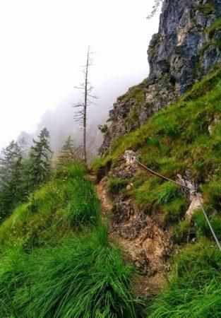 Pfad im mittleren Teil des Klettersteig auf den Grünstein in Berchtesgaden
