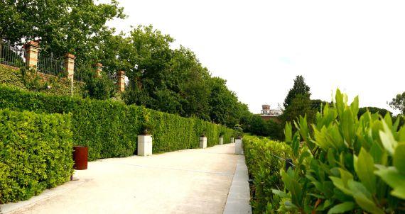 Hecke mit Bonsais im botanischen Garten von Madrid