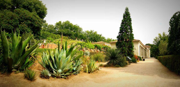Oberer Bereich mit Hartgewächesen und dem Ausstellungsgebäude im botanischen Garten von Madrid