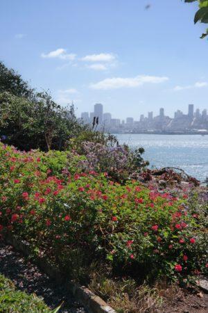 Die Gärten von Alcatraz