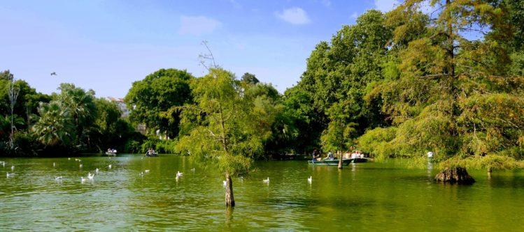 See mit Ruderbooten im Parc de la Ciutadella in Barcelona