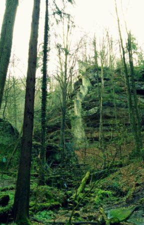 Alte Mauerreste des Bärengarten