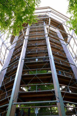 Der Aussichtturm des Baumwipfelpfad auf Rügen