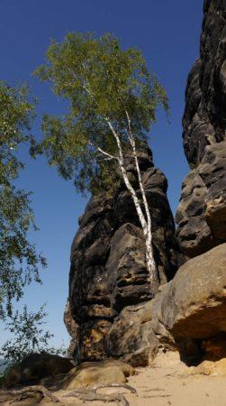 Felsen mit Kletterpfadmarkierung