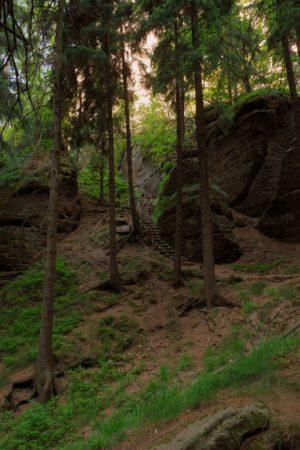 Holzstufen zur Fluchtwand