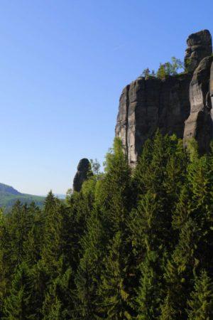 Felswand mit Heringsgrundnadel