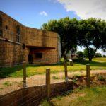 Tarnanstrich eines Bunker aus dem 2. Weltkrieg