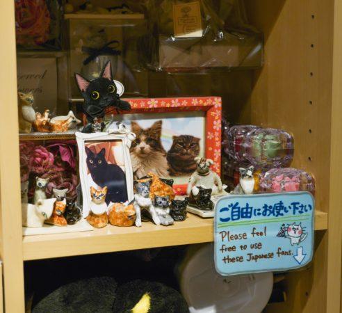 Geschenke in einem Katzencfae