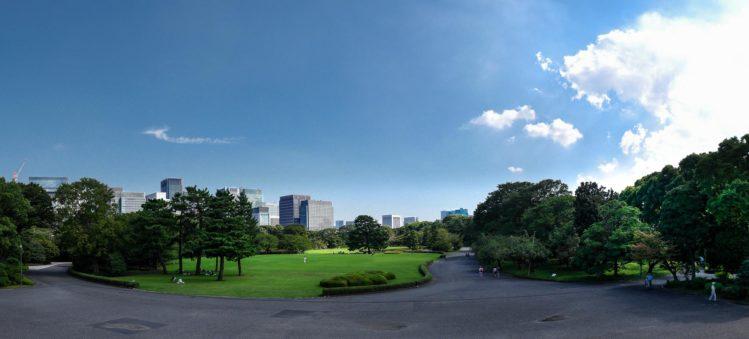 Wiese mit Skyline von Tokio