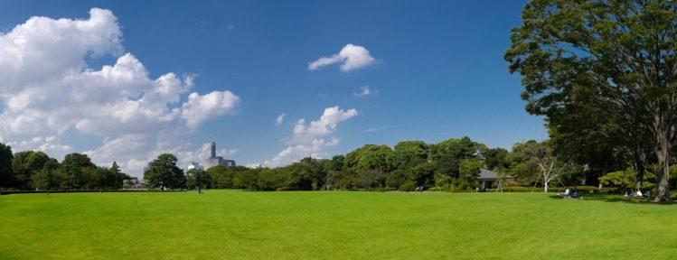 Foto: Wiese im Ostpark in Tokio
