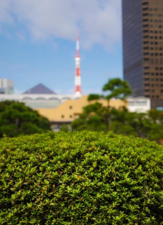 Tokyo Tower und WTC