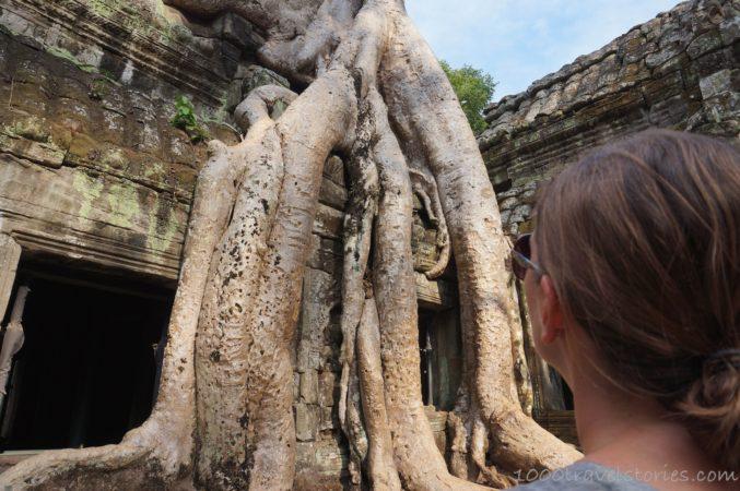 Der Tempel Ta Prohm in Angkor, Kambodscha.