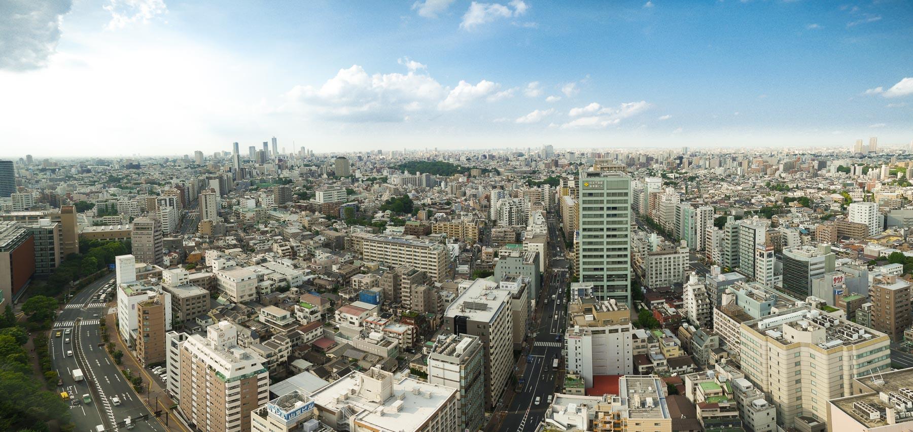 Skyline Tokio mit Blick auf Shinjuku