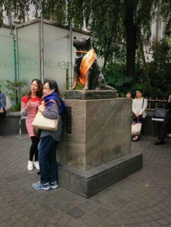 Hachikō Statue in Shibuya