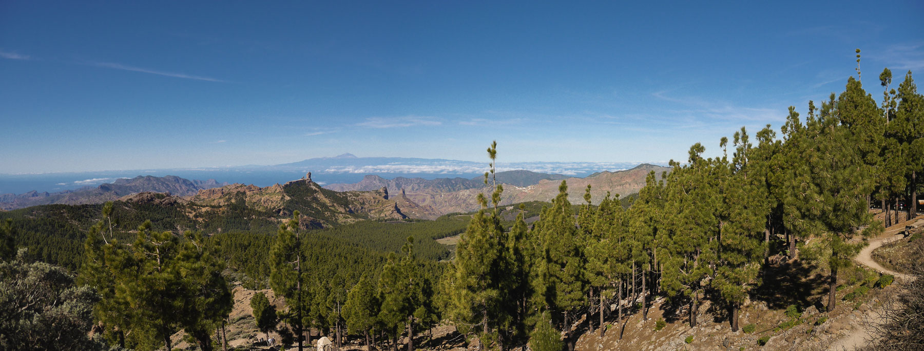 Blick auf den Roque Nublo vom Pico de las Nieves
