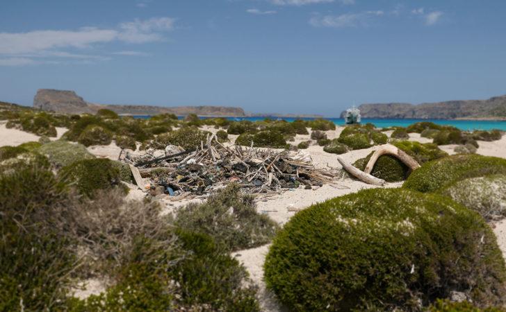Abfall zwischen grünen Büschen am Sandstrand