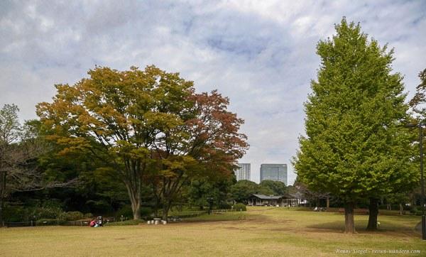 Foto: Grünanlage im Kitanomaru Park in Tokio