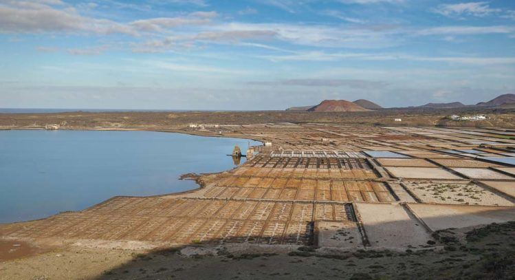 Panorama von Meersalzanlage Salinas de Janubio