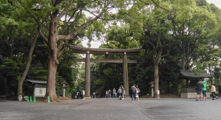Tori am Park zum Meiji Shrine