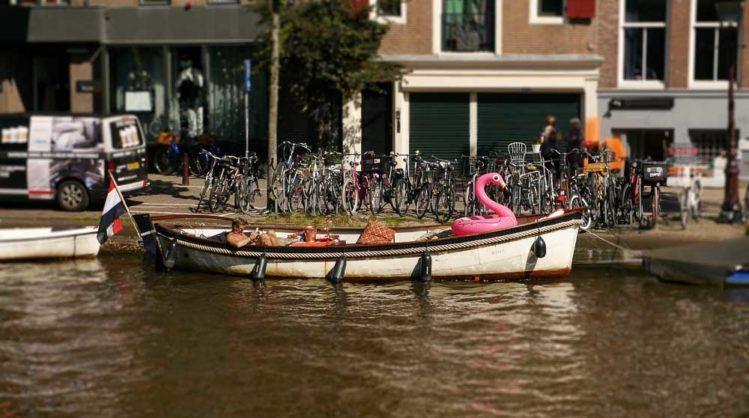 Boot mit pinkfarbenen Schwan in Amsterdam