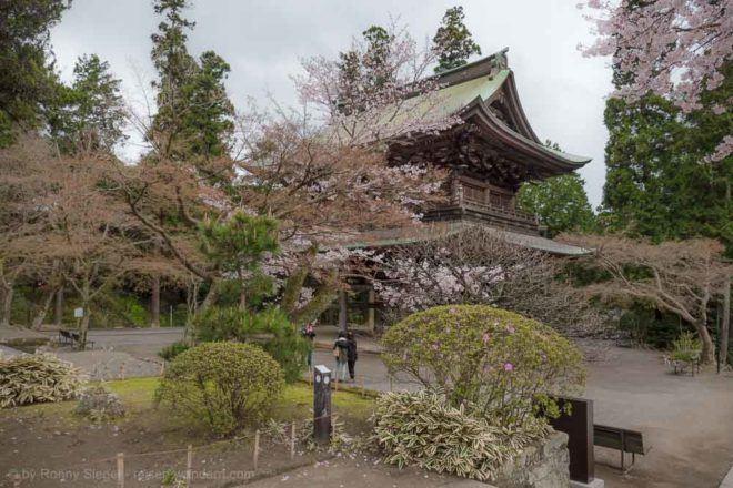 Tempel beim Engaku-ji Tempel