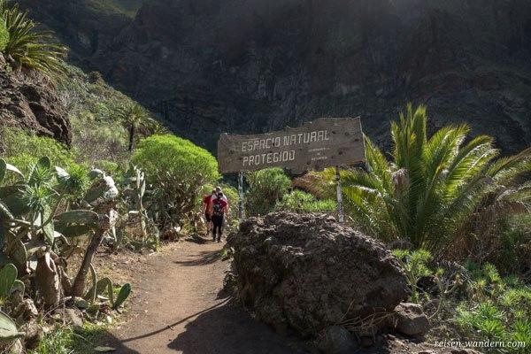 Wanderweg durch Barranco von Masca nach Los Gigantes