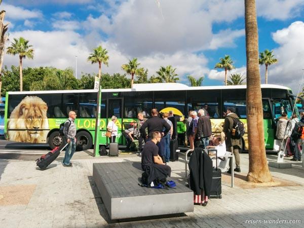 Bushaltestelle auf Teneriffa mit Bussen