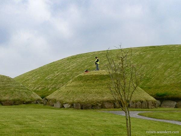 Mann der Rasen mäht auf Hügelgrab in Knowth