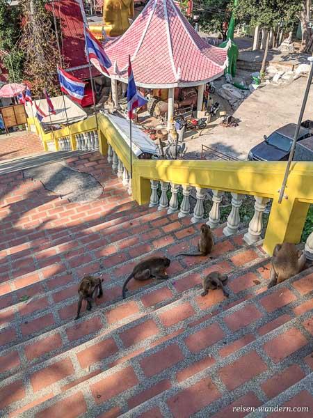 Treppe zum Wat Khao Takiab in Hua Hin mit vielen Affen