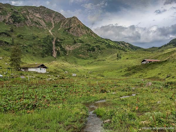 Wildalm in den Kitzbühler Alpen