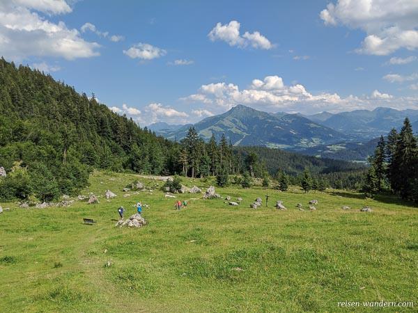 Abschnitt des Steinkreisrundweg bei der Wochenbrunner Alm