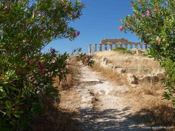 Säulenwand des Tempel C auf der Akropolis in Selinunt