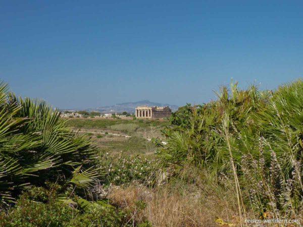 Blick auf Tempel E über Freigelände