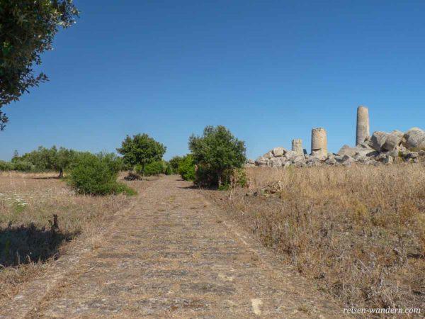 Säulen des Tempel G in Selinunt