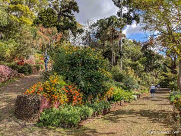 Botanischer Garten Jardim Botânico da Madeira in Funchal