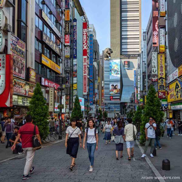 Godzilla Road in Kabukicho in Shinjuku